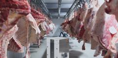 Безопасное производство: осушение воздуха на мясной промышленности